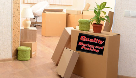 ottawa-on-local-movers